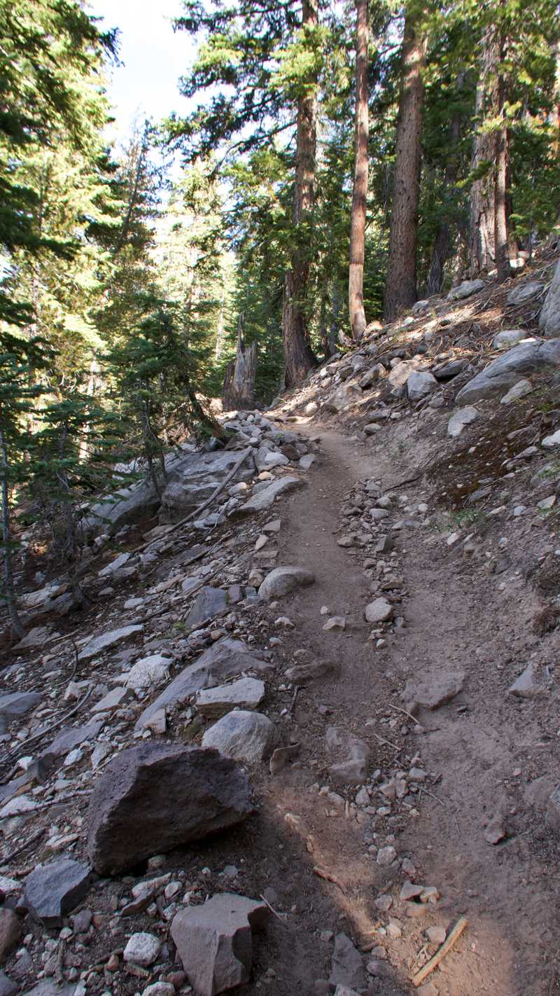 Climbing trail on the PCT