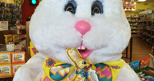 where-the-easter-bunny-really-gets-that-candy