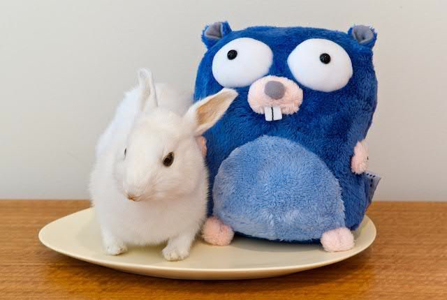 A picture of the Go Gopher, mascot of the Go Programming Language, with a rabbit.