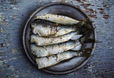 kenapa butuh omega 3