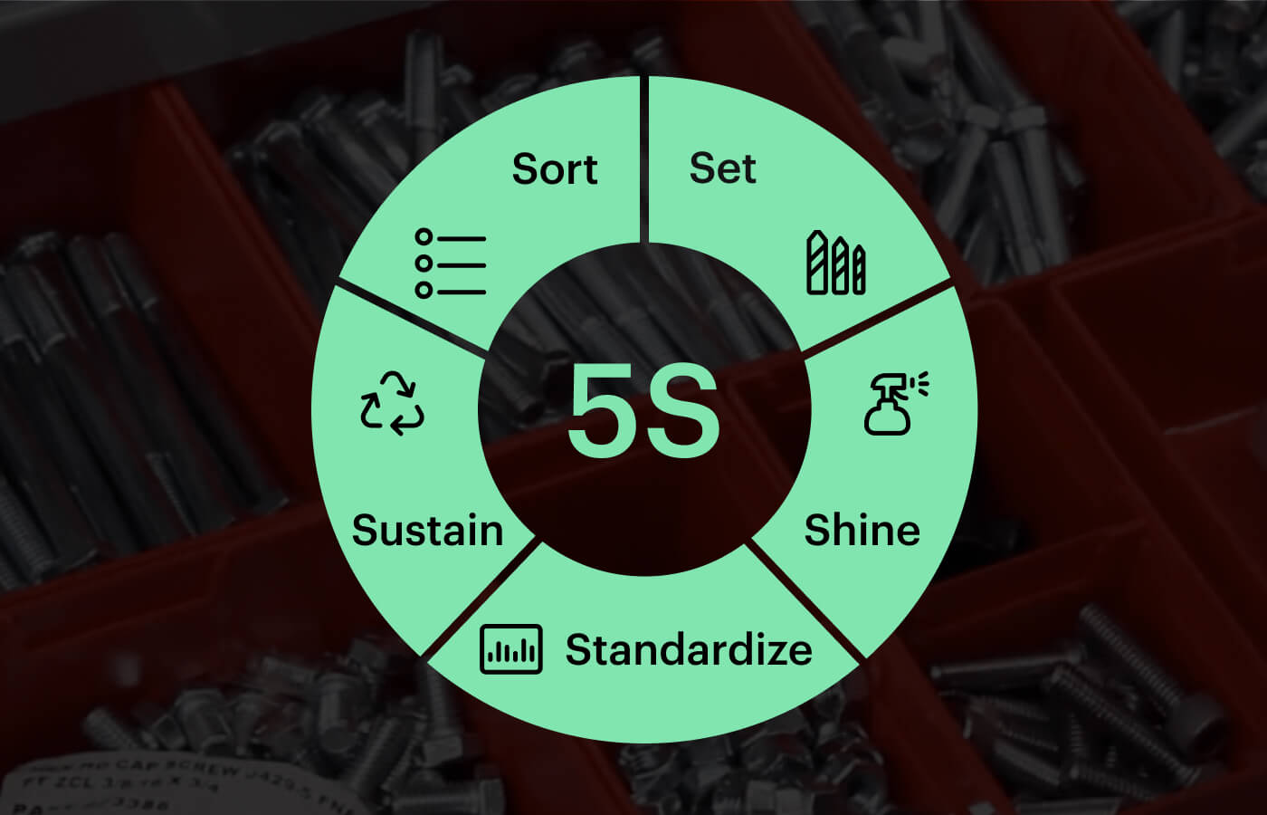 5s wheel visual