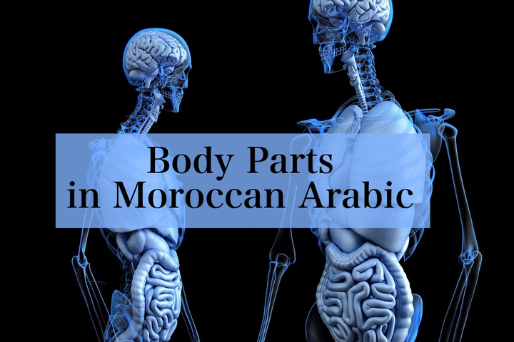 Body Parts in Moroccan Arabic