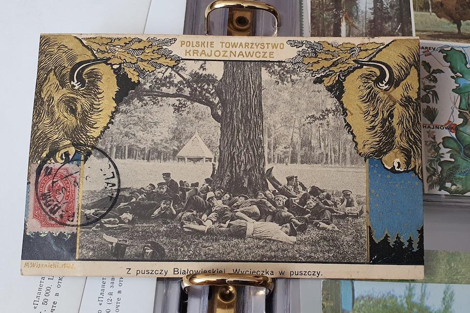 Чугунная фигура зубра, установленная в память охоты 1860 г. императора Александра II. Из книги 'Царские охоты в Беловежской пуще. Страницы истории'