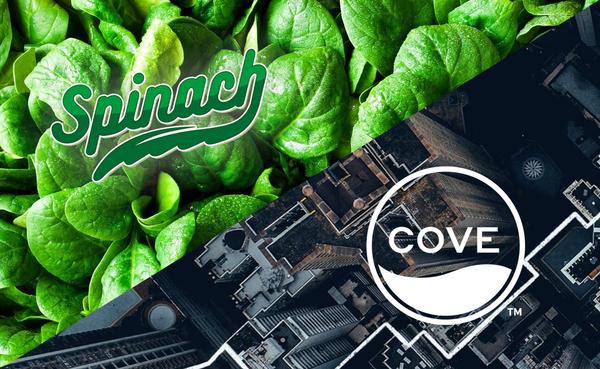 SPINACH & COVE