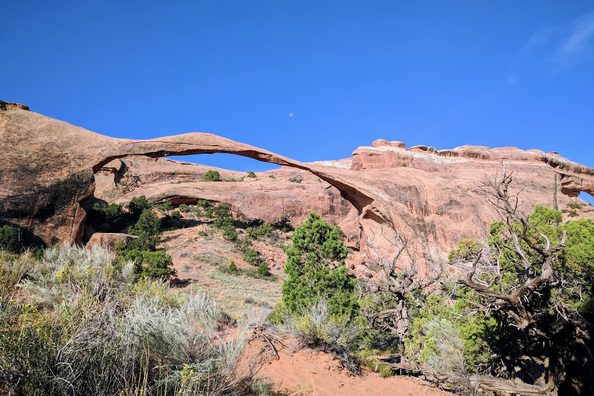 An incredibly thin red sandstone arch, with the Moon visible just beyond it.
