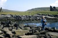 The Urie Shoreline, Fetlar