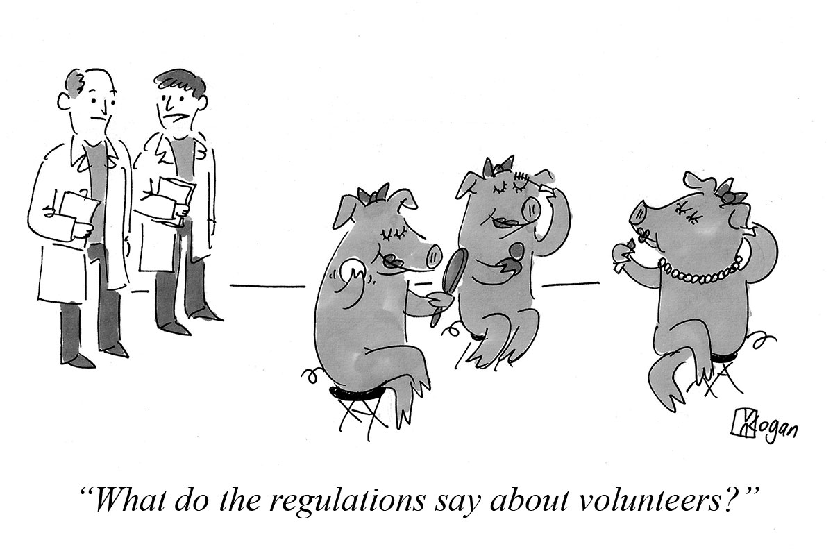 What do the regulations say about volunteers?