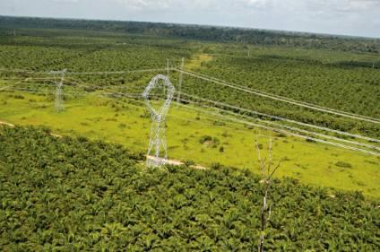 Imagem torre de transmissão