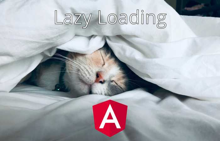 Manually Lazy Load Modules And Components In Angular Image