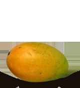mango-kesar