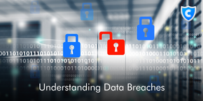 Understanding Data Breaches
