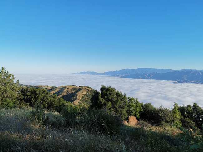 El cielo Camino