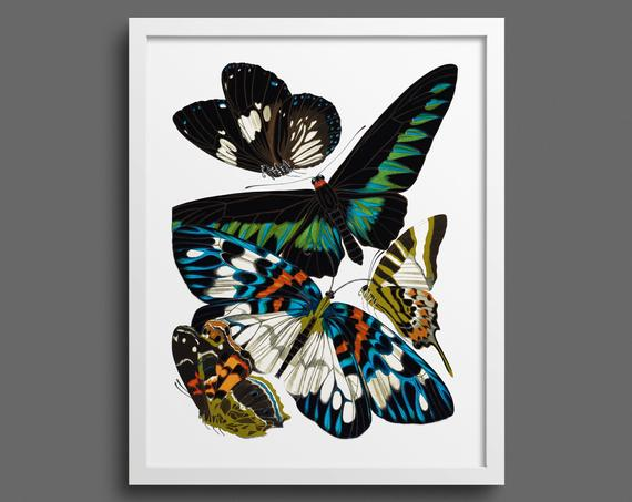 Papillons by EA Seguy - plate 10