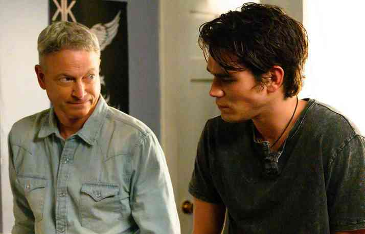 Gary Sinise Co-stars in Erwin Brothers Film, 'I Still Believe'