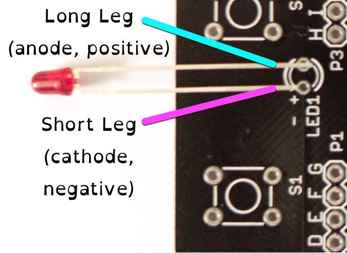 Anode and cathode orientation