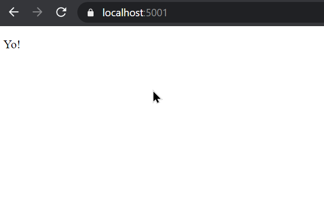 dotnet watch run web result