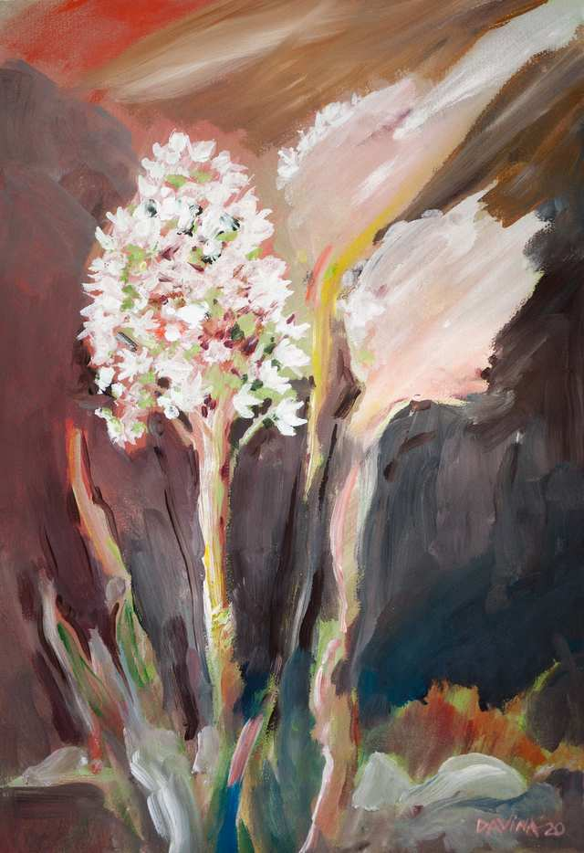 Sacred Landscapes Bear Grass, acrylic on paper