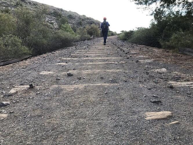 camino vías tren niño