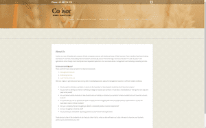 Desktop screenshot of Covisor