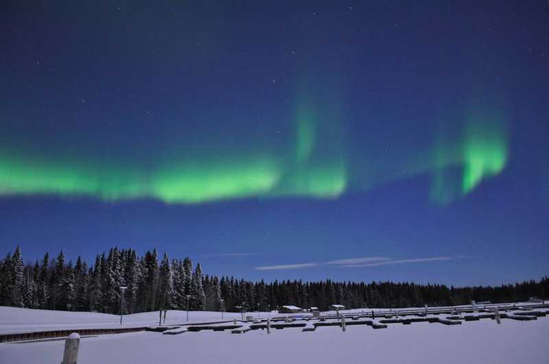 Northern lights above trees and a parking lot