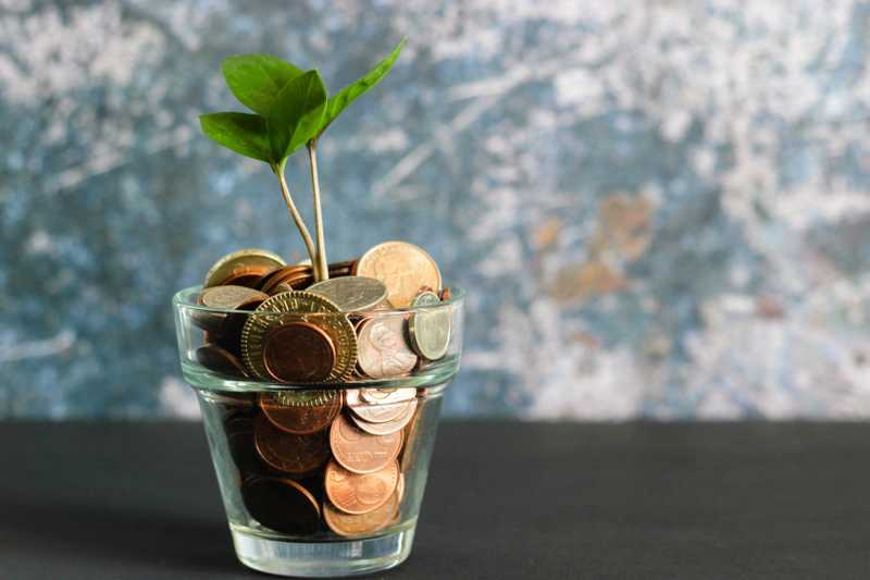 Et glass med mynter som står på en mørk overflate. Det spirer en plante opp fra myntene. Bakgrunnen er blå og hvit.