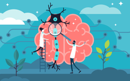 drawing of tiny man and woman studying giant brain