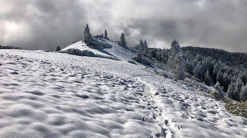Tracks in the snow go over a snowy ridge