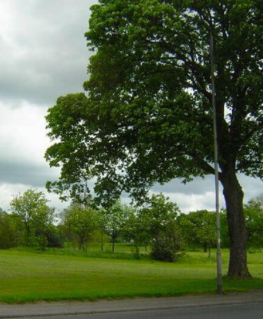 Nunroyd Park