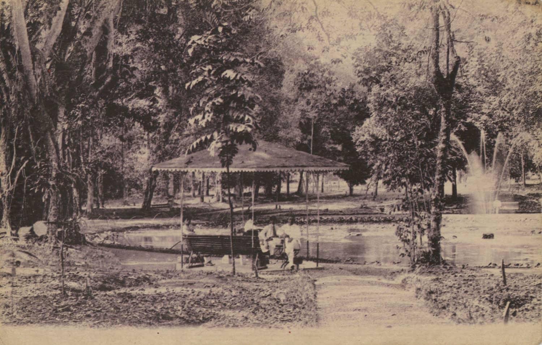 Botanical Gardens, 1900s