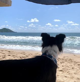 Nina en la playa, disfrutando su retiro.