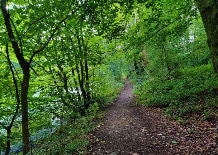 Farnley Fish Pond