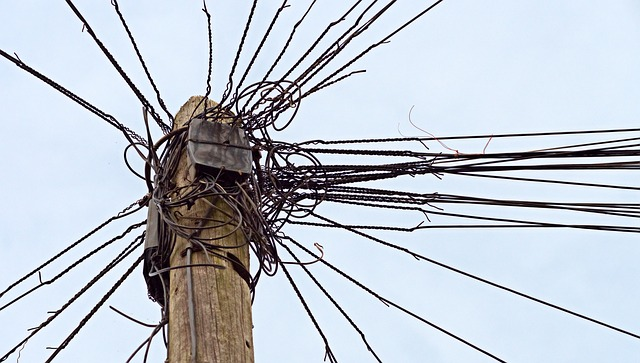 Thicket of telephone wires