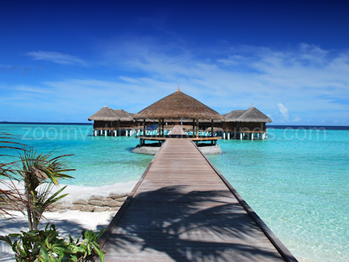 Novelty Virtual Background for Zoom on tropical beach with wooden huts and beautiful pier