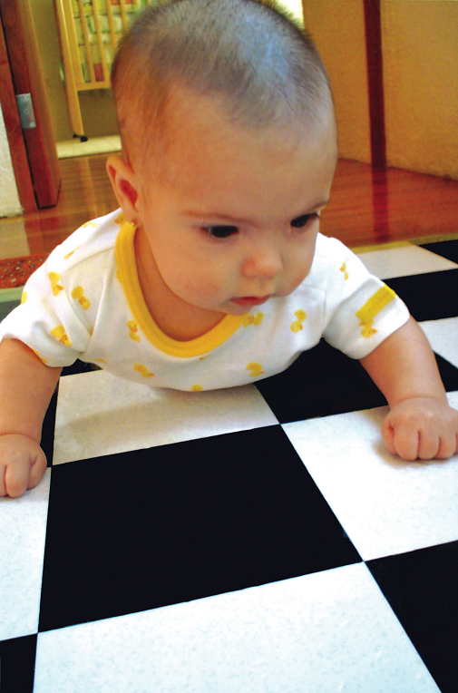 Your Baby Is Smarter Than You Think0