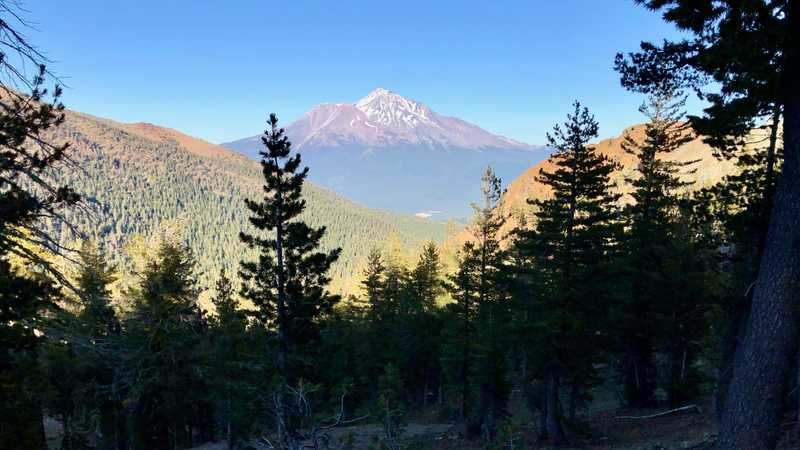 A late afternoon view of Mt. Shasta