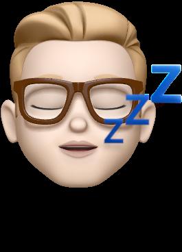 Niklaus Gerber MEMOJI sleeping