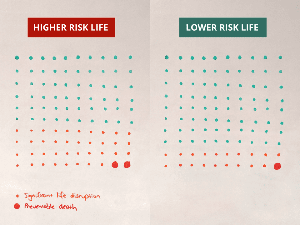 We can't prevent every disaster, but by reducing risks here and there we can give ourselves far better odds. A life with 20 risks is safer than a life with 40.