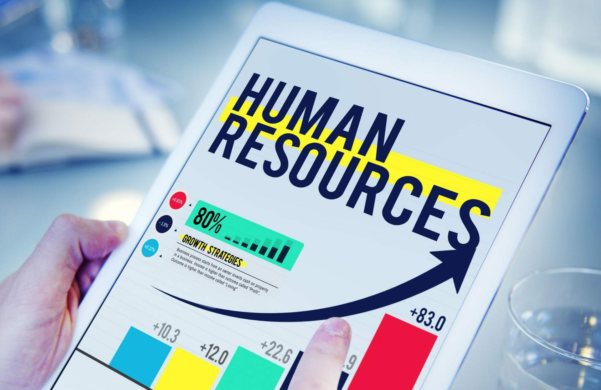 What does a good HR Management consultancy bring to your business?