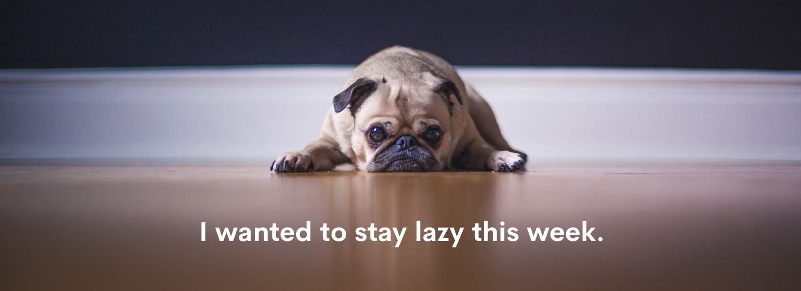 I wanted to stay lazy this week.