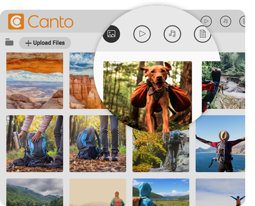 Picture of the Canto backend and the image library