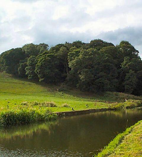 Lodge Wood Calverley Leeds