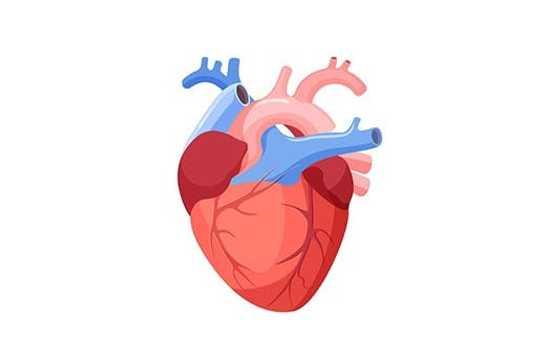 Insuficiența cardiacă