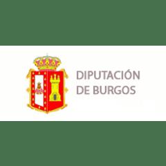 Diputacion Burgos - Dominios .es nerion