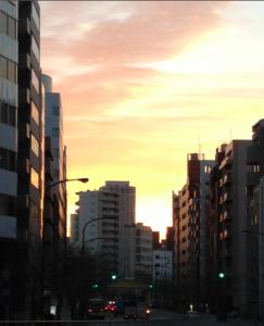 Tokyo at Dawn
