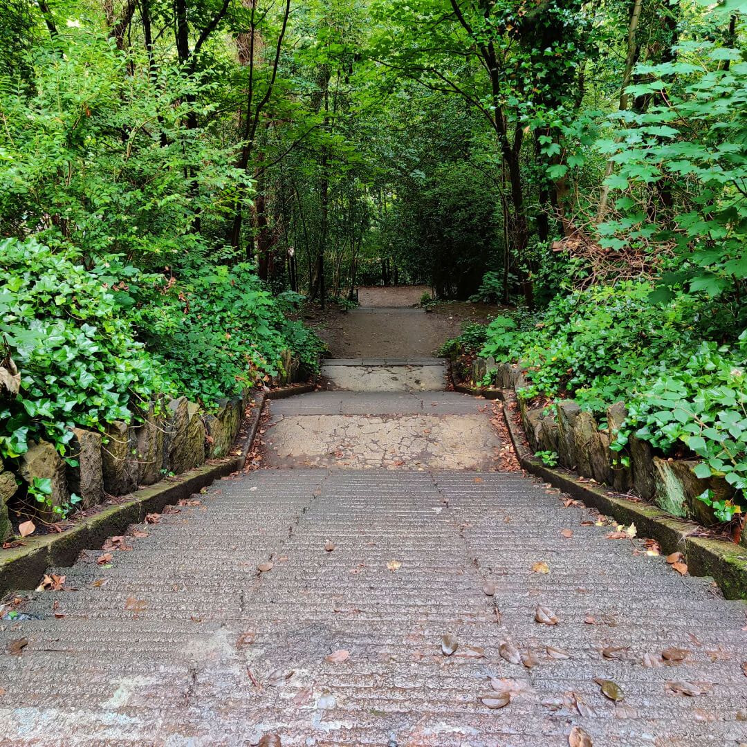 Armley Park Killer Steps from the top