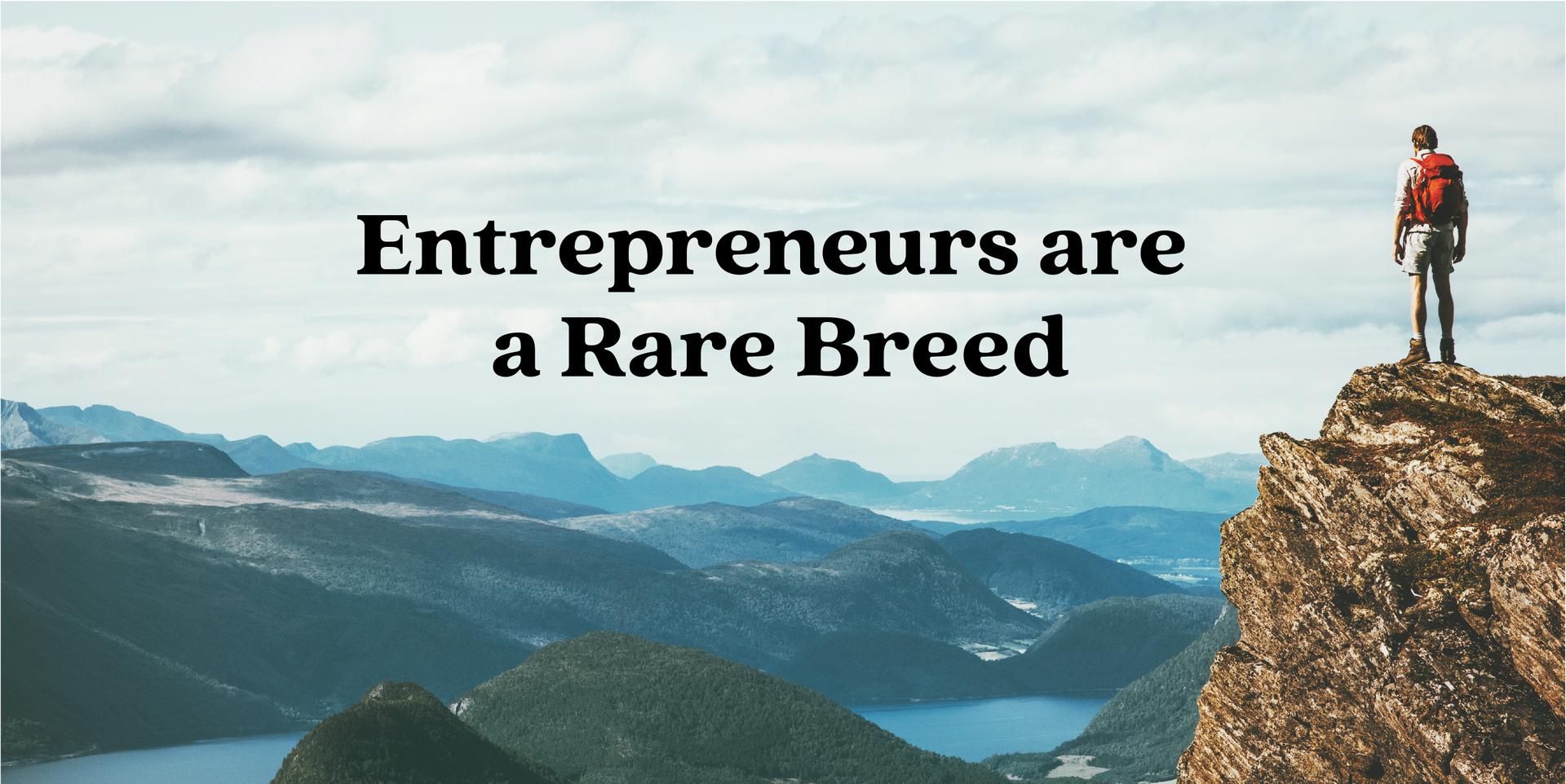 Entrepreneurs are a Rare Breed