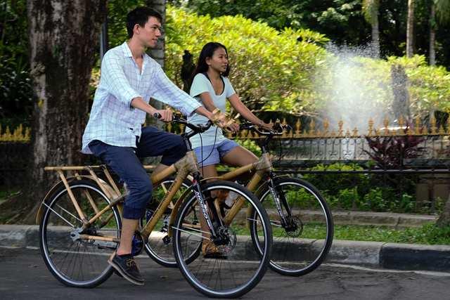Magic Green - Bamboo Bicycles