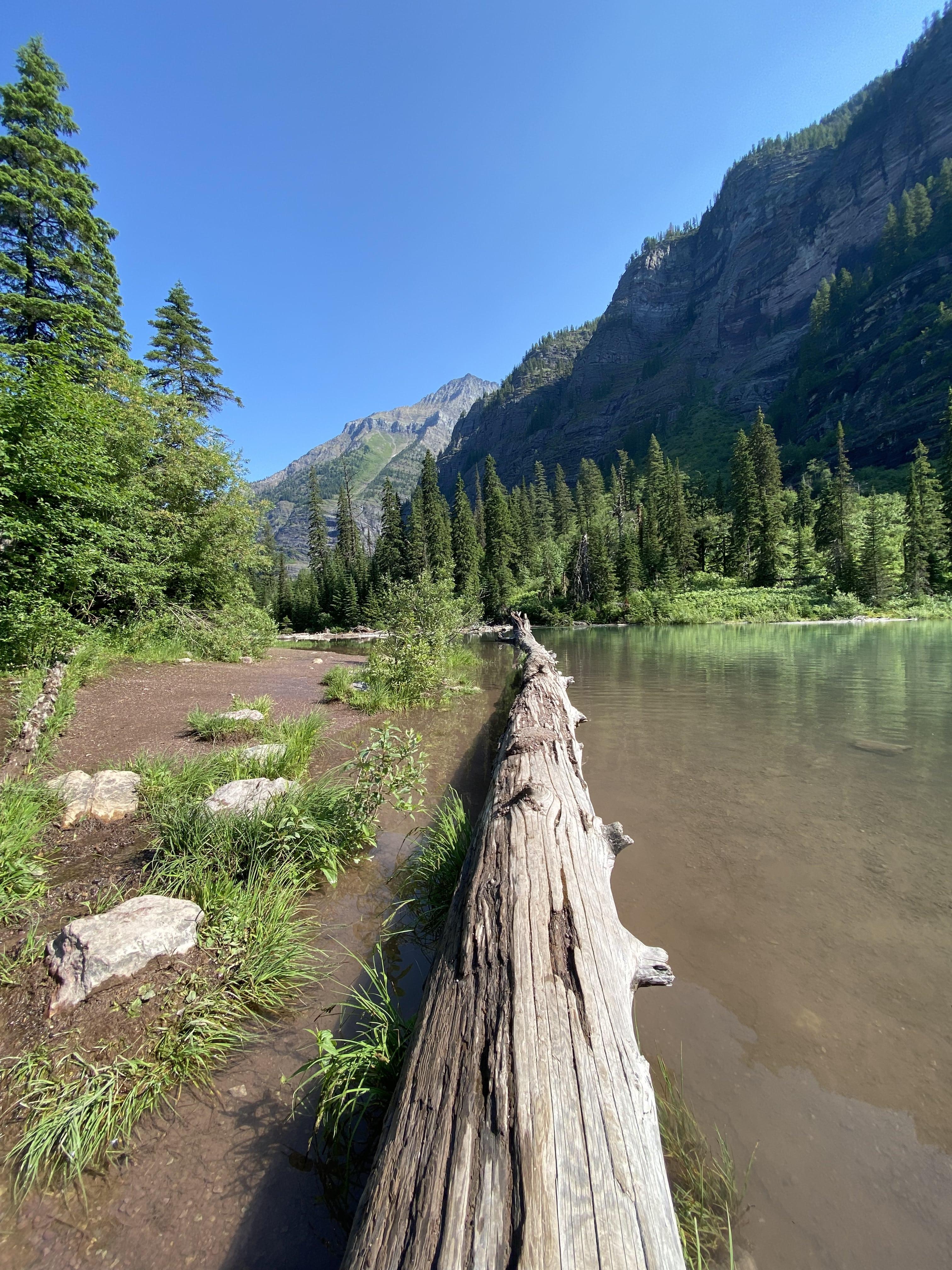 Avalanche trail, MT!