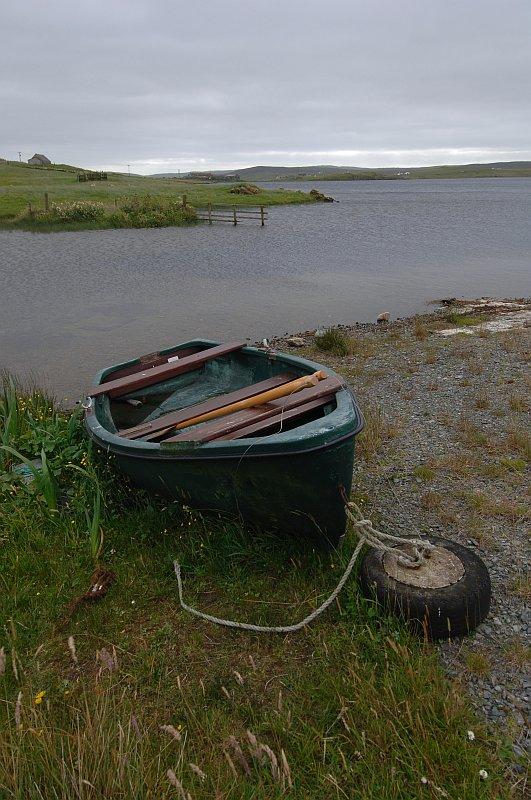 Benston Loch, Nesting