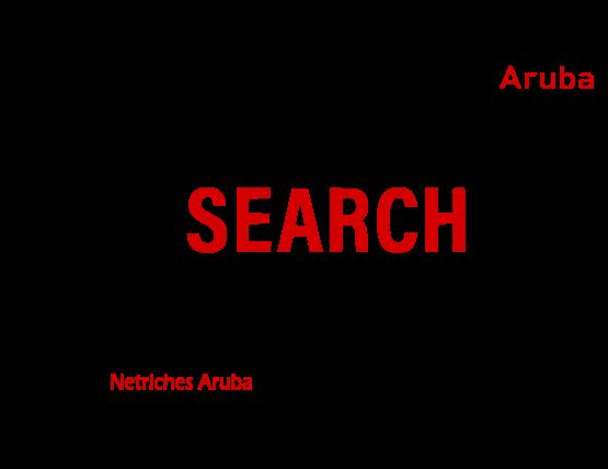 Netriches-Aruba-Search-Engine-Optimization-Services